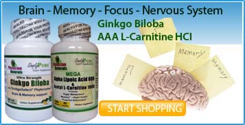 Ginko Biloba Supports Memory - Concentration and Circulation