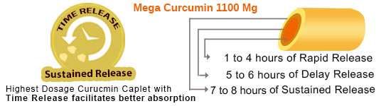 Mega Curcumin: Time Release facilitates better absorption